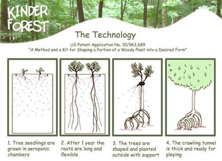 kinderforest-2.jpg