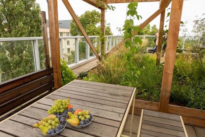Neuer Photovoltaik-Dachgarten;